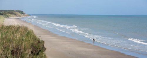 Beach with horserider